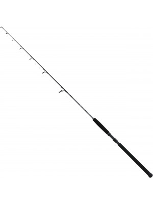 Shimano Beastmaster Catfish Fireball, 1.83m, 85-200g, 1 part, Catfish rod